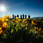 A Teton Teton Science Schools wildlife tour stops to explore the balsamroot flowers along the Antelope Flats Road in Grand Teton National Park, Wyoming.(Greg Peck, Matthew Bart, Sean Baker, Maura Bushior, Katie-Cloe Stock, Tracy Logan, Paul Maddex, Lead Guide Dawson)