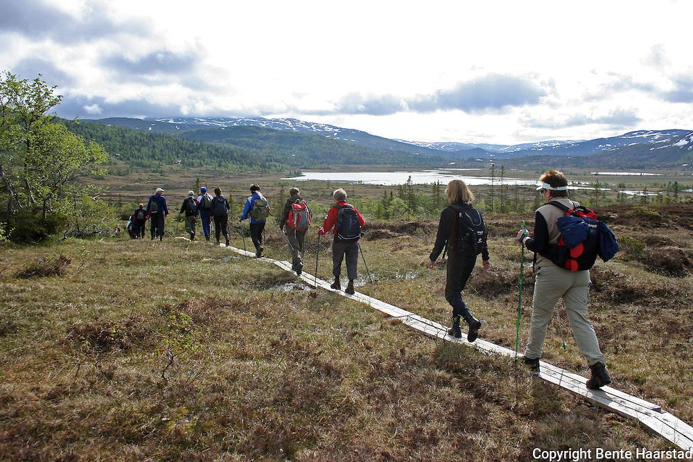 Sildratur, fra Vekta i Selbu til Sildra øverst i Sondalen i Stjørda. Det er lagt godt til rette for å gå tørrskodd fra vekta og forbi Stråsjøen og videre inn i fjellet. Stråsjøen og Prestøyan naturreservat.