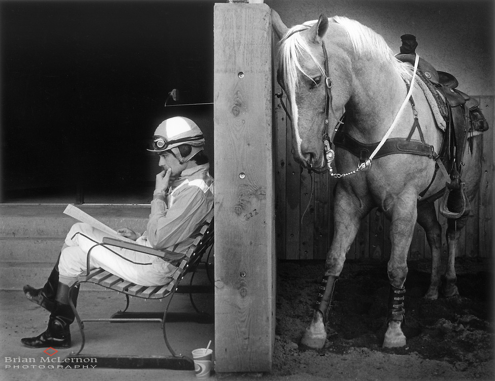 Horse and jockey at Paradise Downs, AZ