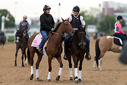Oaks 142 hopeful Land Over Sea jogged the track during training, Tuesday, May 03, 2016 at Churchill Downs in Louisville.