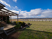 The view from Nocton's cellar door in the Coal River Valley. Nice wines here. The current cellar door is basically a double-wide. A new facility is planned for a spot closer to the main road on the other side of the pond in view here.
