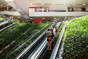General Views showing One Central Park which is built around Chippendale Green. The bulding itself was designed by award-winning Parisian architect Jean Nouvel and the vertical gardens designed by the artist and botanist Patrick Blanc. Interior shot of people going up escalators surrounded by exotic plants,Chippendale, Sydney, Australia. Chippendale, Sydney, Australia.