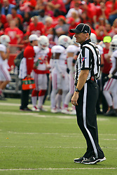 21 October 2017:   Bill Folz during the South Dakota Coyotes at Illinois State Redbirds Football game at Hancock Stadium in Normal IL (Photo by Alan Look)
