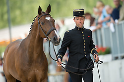 Boiteau Arnaud, (FRA), Quoriano*Ene HN<br /> First Horse Inspection <br /> CCI4* Luhmuhlen 2016 <br /> © Hippo Foto - Jon Stroud
