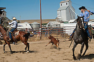 Wilsall Ranch Rodeo, Montana, Team Branding, Lazy SR Ranch Team, Kurt Mraz, Cody Wilsey