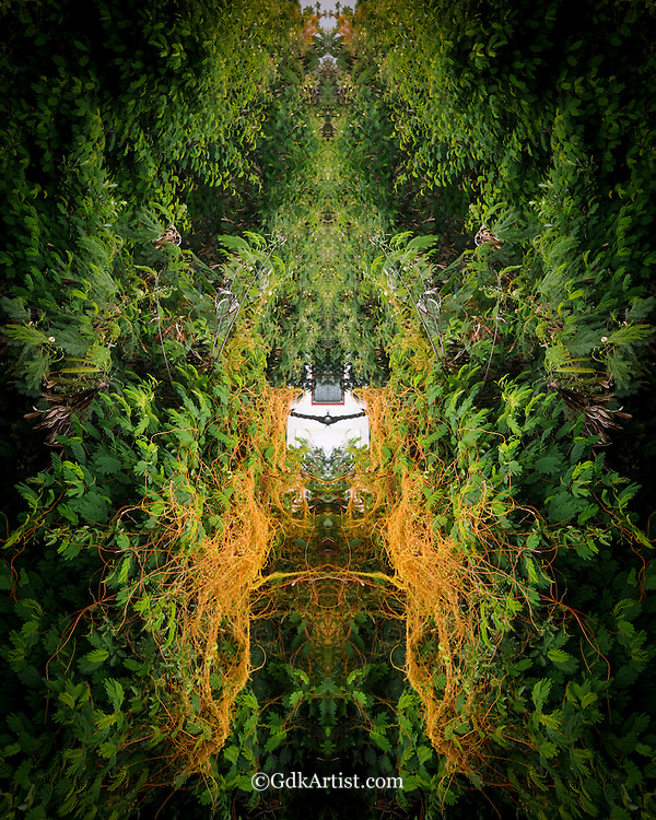 My Secret Garden - St. John's Island, USVI, USA
