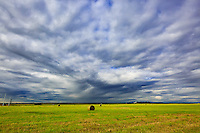 South East of Calgary near Indus, AB<br /> <br /> &copy;2015, Sean Phillips<br /> http://www.RiverwoodPhotography.com