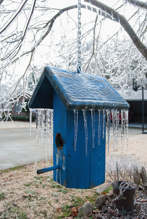 Birdhouse Covered with Winter Ice