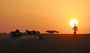 Israel, Negev desert, Bedouin shepherd and his sheep silhouette at sun set