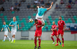 Steve Borg of Malta vs Josip Ilicic of Slovenia during football match between National teams of Slovenia and Malta in Round #6 of FIFA World Cup Russia 2018 qualifications in Group F, on June 10, 2017 in SRC Stozice, Ljubljana, Slovenia. Photo by Vid Ponikvar / Sportida