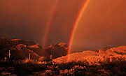 A double rainbow highlights the Bear Canyon area in the Santa Catalina Mountains, Coronado National Forest, Sonoran Desert, Tucson, Arizona, USA.