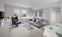 108 S. Courthouse Road Arlington, VA Myerton Condominium JBG designer Jeff Akseizer Home Living Room