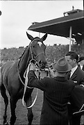 30/06/1962 <br />