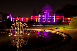 © Licensed to London News Pictures. 20/11/2015. LONDON, UK. The Enchanted Woodland opens for its 10th anniversary season at Syon House in West London.  An illuminated trail takes visitors through gardens designed by Capability Brown, round an ornamental lake and ending at the spectacular Great Conservatory (pictured).  Photo credit : Stephen Chung/LNP
