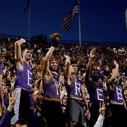 November 17, 2012; Baton Rouge, LA, USA;  LSU Tigers fans in the stands during the second half of a game against the Ole Miss Rebels at Tiger Stadium. LSU defeated Ole Miss 41-35. Mandatory Credit: Derick E. Hingle-US PRESSWIRE