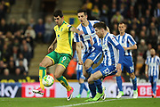 Norwich City striker Nelson Oliveira (9) and Brighton & Hove Albion defender Sebastien Pocognoli (12) during the EFL Sky Bet Championship match between Norwich City and Brighton and Hove Albion at Carrow Road, Norwich, England on 21 April 2017.