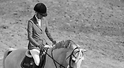 Luciana Diniz (POR) and Winningmood before the start of the Friends of the Meadows Cup - 1.60 M, September 8, 2017 during Spruce Meadows Masters in Calgary, Alberta, Canada. Rebecca Berry