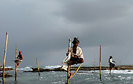 """Many of the traditional and emblematic """"stilt fishermen"""" of Sri Lanka lost their homes in the 26 December, 2004 tsunami. Surprisingly, most of the poles from which they fish off the coast survived. However, many people have stopped eating fish since seeing large numbers of dead bodies in the ocean following the tsunami. In addition to enormous material damage, fisherman around the country have a hard time selling their catch and earning a living. Koggala, Sri Lanka. 22/01/2005. Photo © J.B. Russell"""