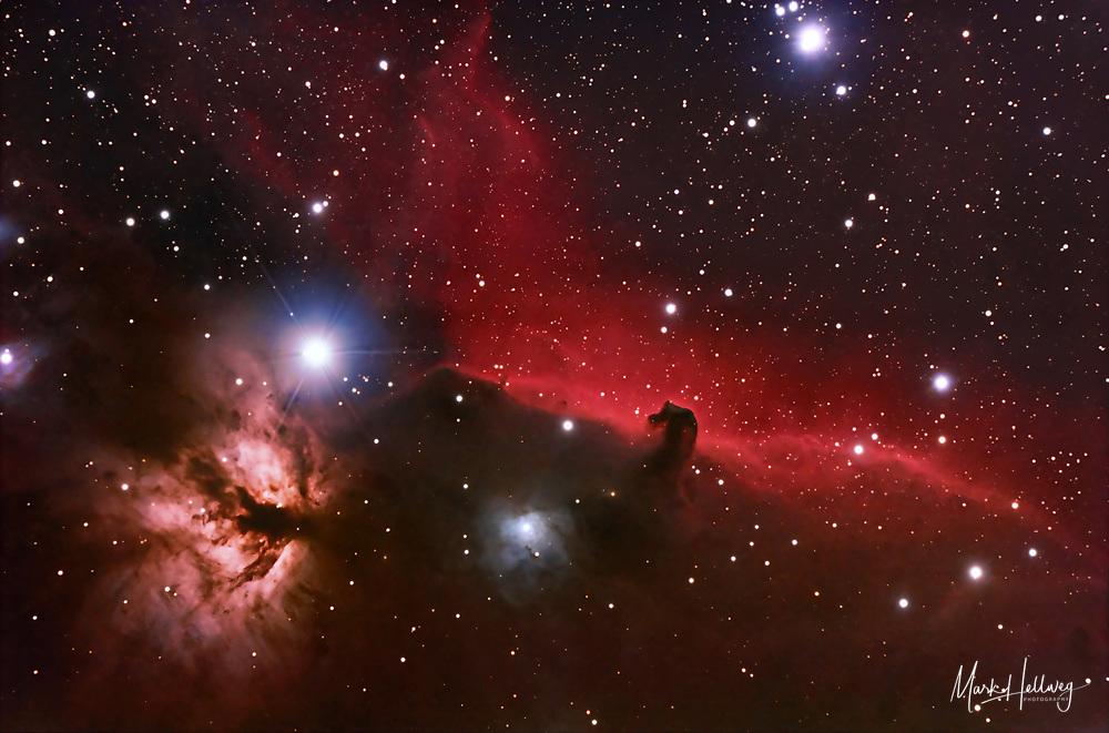 Dieses Aufnahmemotiv zeigt die farbenprächtige Region um den Stern Zeta Orionis im Gürtel des Sternbilds Orion. Zentral zieht der rotleuchtende Nebel IC 434 mit dem berühmten Pferdekopfnebel (Barnard 33) durch das Bild. Dieser >Pferdekopf< ist keine >Lücke< innerhalb des roten Nebels, sondern ein vorgelagerter sog. Dunkelnebel, der eben das rote Licht an der Stelle überlagert. Im linken Bildbereich, unterhalb des hellen Sterns Zeta Orionis ist der Flammennebel zu sehen. Auch wenn Stern und Nebel auf dem Bild scheinbar sehr nahe beisammen stehen, so ist dies eine Täuschung. Tatsächlich ist der Stern nur halb so weit von der Erde entfernt wie der Nebel selbst. Ein weiterer, sehr interessanter Nebel auf dem Bild ist der Reflexionsnebel NGC2023 (mitte unten). Dieser Nebel wird von einem dahinter liegenden Stern zum Leuchten angeregt. Aufnahmedaten des H-alpha +RGB Komposits: Luminanz: 14 x 10 min @ 800 ASA Astronomik Hα-filter: 15 x 10 min @ 1600 ASA Aufnahmeoptik: Takahashi FS102 NSV f/8 Montierung: Losmandy G11 + Littlefoot Kamera: Canon EOS 20Da Autoguiding: Webcam guiding @ Vixen ED81 + 2x barlow Bildbearbeitung: ImagesPlus, PS, Neat Image