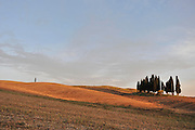 Tuscan Landscapes, Val d'Orcia, San Quirico d'Orcia.