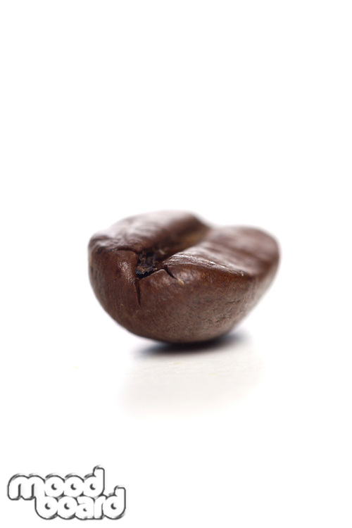 Coffee grain on white background