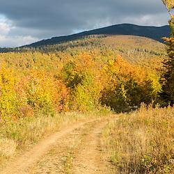 A woods road in fall in Reddington Township, Maine. Near Black Nubble Mountain. High Peaks Region.
