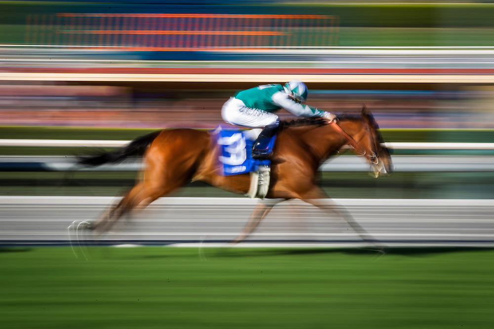 March 07 2015: Singing Kitty with Aaron Gryder up wins the China Doll at Santa Anita Park in Arcadia CA. Alex Evers/ESW/CSM