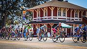 Professional cyclists at the Amgen Tour of California, Santa Paula, California USA