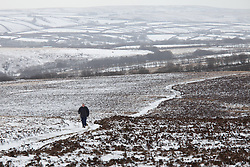 © Licensed to London News Pictures. 14/01/2015. Wheddon Cross, Devon, UK. A woman walking on Dunkery Hill in Exmoor National Park, Devon this morning, 14th January 2015. Snow has fallen overnight across many parts of England, causing travel disruption in some areas.  Photo credit : Rob Arnold/LNP