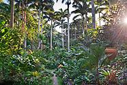 Hunte's Garden - Barbados