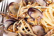 Closeup shot of a typical Italian recipe: spaghetti with clams.