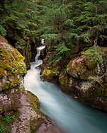 Avalanche Creek is a beautiful water feature draining into Lake McDonald on the West side of the Continental Divide and the West side of Glacier National Park, Northern Montana, USA.