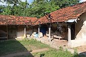 Sri Lanka. Vaddukoddai area Jaffna Peninsula.