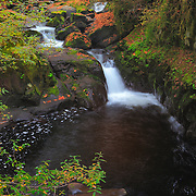 Sweet Creek Lower Cascade Falls - Mapleton, Oregon