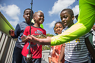 Zackary Justi, right, reacts to seeing a freshly caught Puffer fish held by North Miami police chief Larry Juriga during the Cops and Kids event hosted by the North Miami Police Department at North Bayshore William Lehman Park, Saturday, July 21, 2018. Officers from North Miami Police Department engaged with the community for a fun day of fishing.