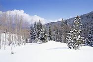 meadow at Park City Mountain Resort, Park City UT USA