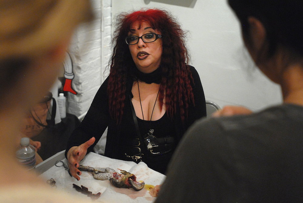 Sorceress Cagliastro makes mummies (animals, organs etc)  for collection or for specific sorcery. Here she teaches a class in the mummification at the Observatory in Brooklyn. A Bull Frog (sourced from the food industry). After it's organs are removed (some can be mummified and replaced) it is  dessicated with embalming salt and then wrapped in linen and painted with resin. ..Picture shows Sorceress Dissecting a Bull Frog to prepare it for salting (This takes 3 months before the body  ready for the process taught in this class)