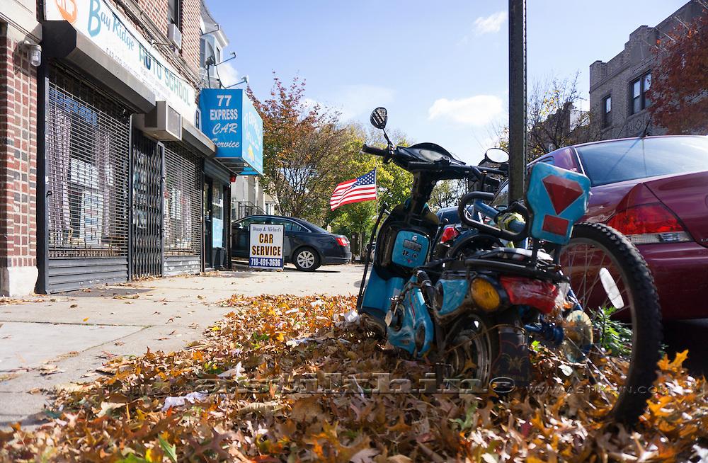 Fall in Brooklyn, NYC.