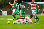 Hamilton Academical Defender Jesus Garcia Tena fouls Celtic FC Midfielder James Forrest during the Ladbrokes Scottish Premiership match between Hamilton Academical FC and Celtic at New Douglas Park, Hamilton, Scotland on 4 October 2015. Photo by Craig McAllister.