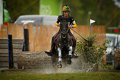 Ponies Minderhout 2018