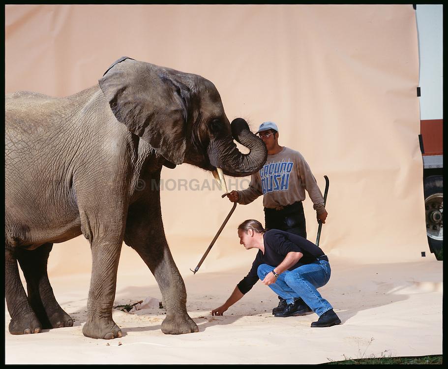 Morgan Howarth Feeding elephant with trainer on sweep Elephant