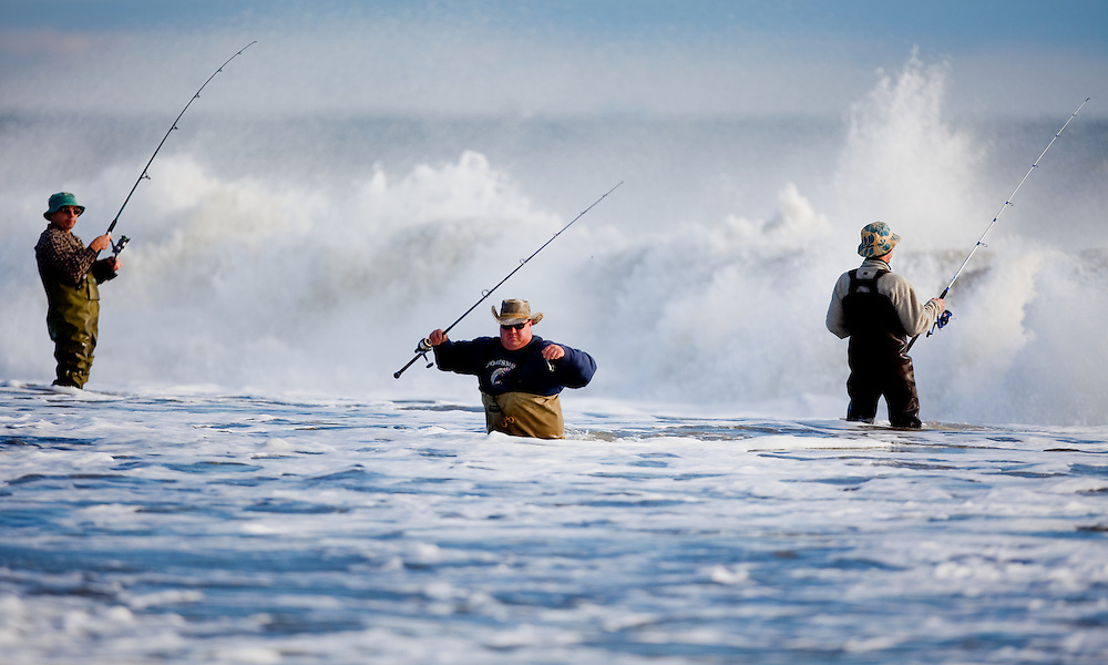 Surf Fishing Nj Of Surfing Fishing Striped Bass Run Sandy Hook Michael J