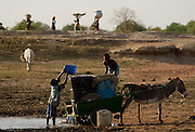 Boys fill barrels with water to be carried with his donkey-pulled cart at the Dikunani dam in Savelugu, northern Ghana, on Friday March 9, 2007. The only of four water sources that has not completely dried out around Savelugu, the pond is used by hundreds of people daily who sometimes walk several kilometers to fetch water. Despite the presence of mesh filters available to people who come get water, cases of guinea worm in the area have gone up sharply in the recent months.