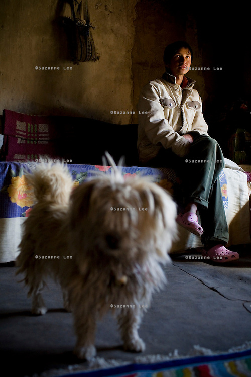 Rinchen Namgyal, aged 19, sits by the window with his 10 year old dog, Tommy as he waits for lunch on 2nd June 2009. Rinchen and his family run a home stay program in Ulley Valley, a scattered village of only 5 houses, one school, 38 people, 4 school children, and 4 pet dogs. The village is not accessible by road. The homestay program is managed by 'Snow Leopard Conservation Organisation', an NGO that helps families in the mountains that face constant snow leopard attacks on their livestock. Leh town is 3505m above sea level, in the Indian Himalayan mountains, in the valley of Ladakh is located in the Indian Himalayas, in the northern state of Jammu and Kashmir. Photo by Suzanne Lee