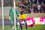 HARRISON, NJ - SEPTEMBER 14:  Thierry Henry #14 of New York Red Bulls reacts after scoring a goal in the first half  during the game against the Toronto FC at Red Bulls Arena on September 14, 2013. (Photo By: Rob Tringali)
