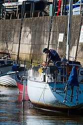 © Licensed to London News Pictures. 15/03/2017. Aberystwyth, Wales, UK.  A man spring-cleaning his sailing boat in the harbour on a day of clear blue skies and brilliant unbroken warm springtime sunshine in Aberystwyth Wales .Photo credit: Keith Morris/LNP