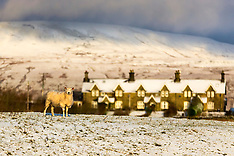 2020_01_28_Yorkshire_Snow_AMC