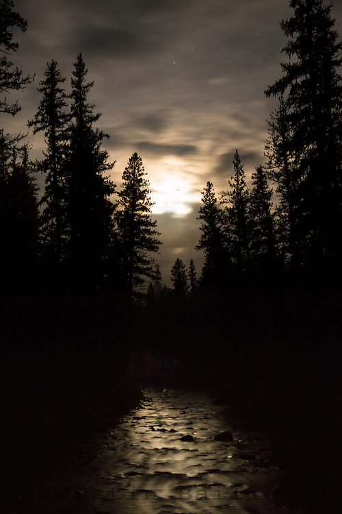 Moonlight on small stream, Montana.