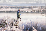 UNITED KINGDOM, London: 29 November 2016 A jogger runs through a frosty Richmond Park this morning as temperatures plummeted to -7C last night. Rick Findler / Story Picture Agency