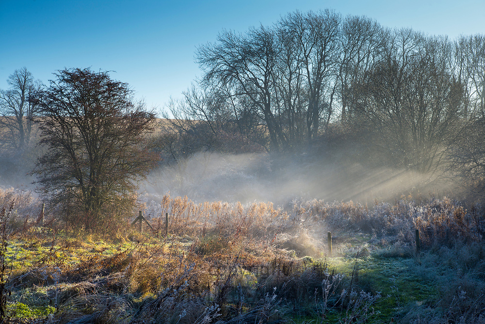 Morning mist forms a typical winter misty and frosty landscape scene in Swinbrook in the Cotswolds, England, UK